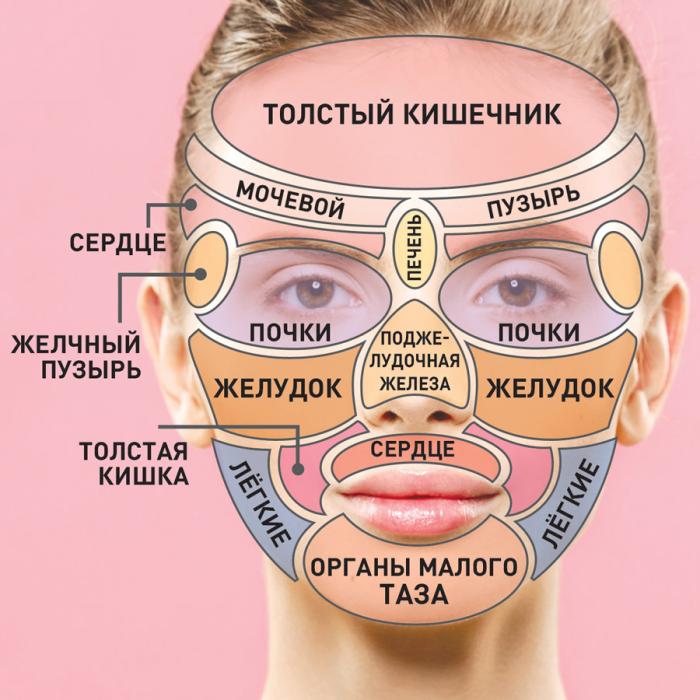 Массаж гуаша для лица техника выполнения дома роликом и скребком восстановим зрение массажер