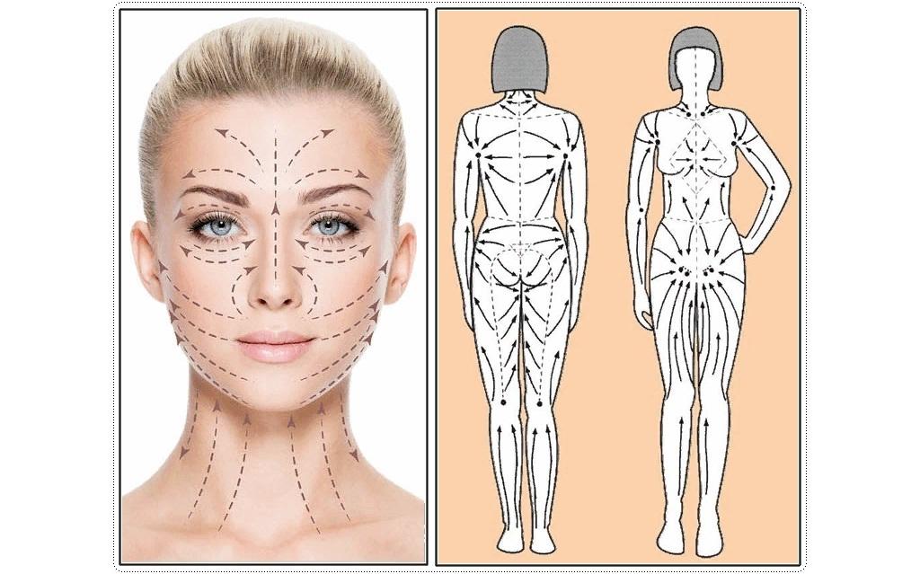 Массажные линии лица и тела гуаша